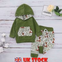 Infant Kid Baby Boy Girl Fox Hooded Tops Long Pants Clothes Set Outfit Tracksuit
