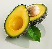 Avocado Butter - 100% Natural - Ultra Refined - Soap Making - Free UK Delivery